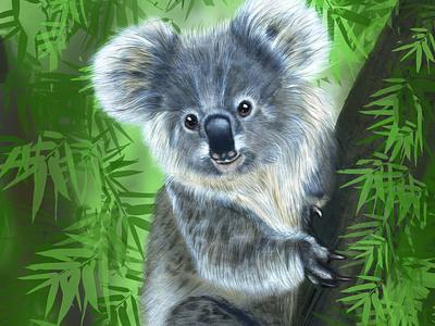 cute koala illustration artist digital art effects abstract graphics vector 2d flat artwork design illustration
