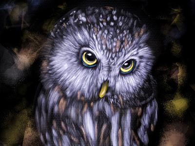 digital owl nature art animal fun painting effects abstract 2d artwork design digital art digital