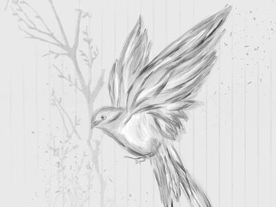 Free drawing bird design abstract artwork digital illustration procreate drawing