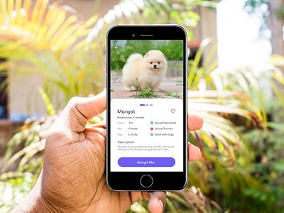 Pet Adoption App uidesign application pets uiux ui app