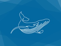 One Line Whale