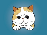 Cat Pin