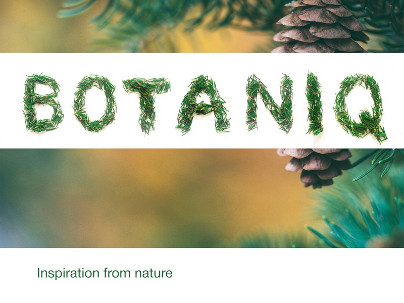 Botaniq Logo (made of fir`s needles) eco friendly nature eco inspiration logo branches fir needles