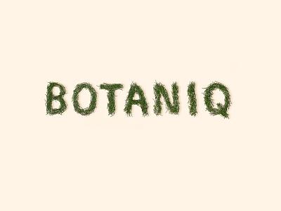 BOTANIQ fir needles eco natural packaging logo craft kraft washing powder