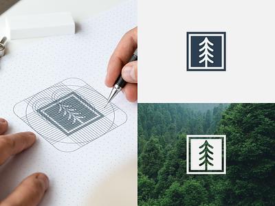 Pine minimal motion graphics graphic design 3d animation ui illustration design vector simple logodesign brand branding artwork minimal pine logo