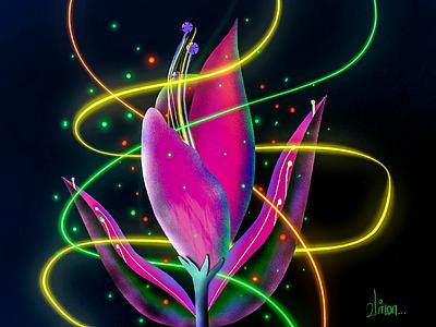 Magical flower vibrance colour vector digital art hand draw glow procreate illustration
