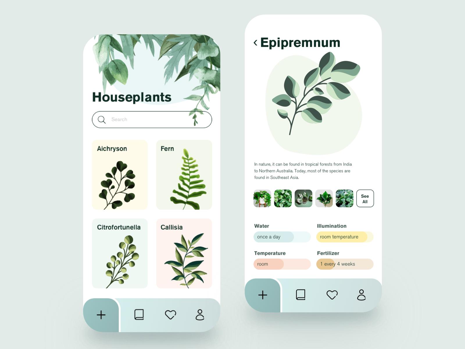 Plant Planner by Ann Negrebetskaya for STFN on Dribbble