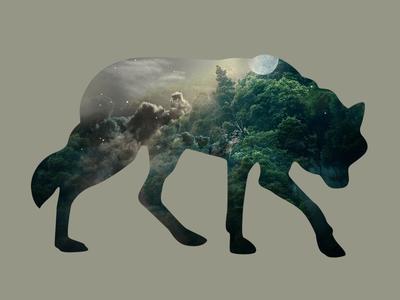 Lone Wolf Wanderer