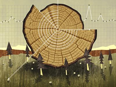 Waldbewirtschaftung dribbbl