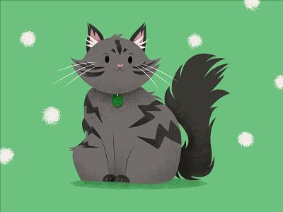 Gizmo the Cat cat character design digital art illustration