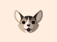 Dog Face Series - Corgi