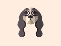 Dog Face Series - Spaniel