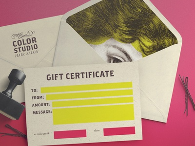 The Color Studio Branding