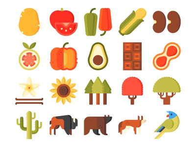 American indigenous icons sunflower chocolate grizzly bear lorikeet coyote bison corn guava pumpkin vanilla beans american food flora fauna vegetation animals