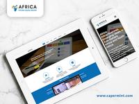 Africa Private Equity Website Design & Development