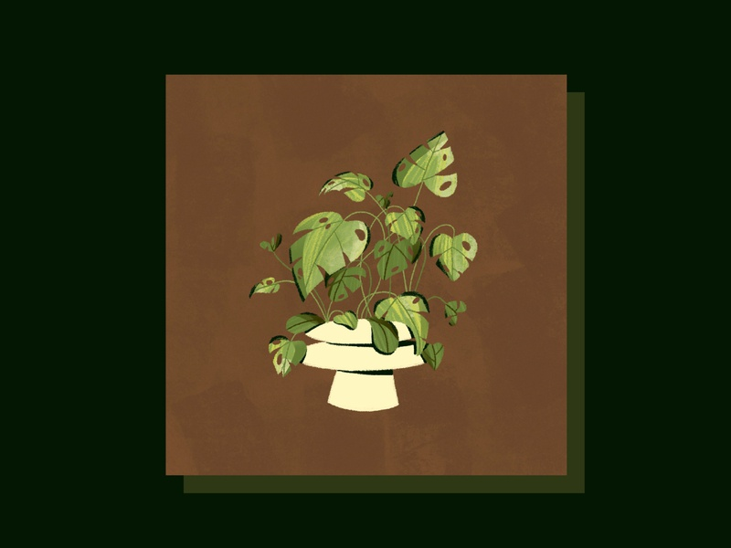 Greens houseplant nature plants natural green texture leaves plant photoshop design illustration