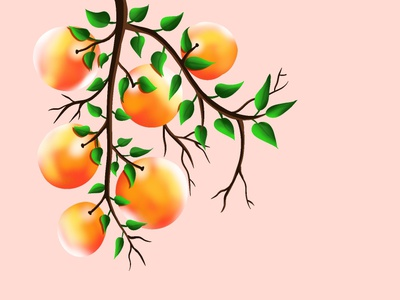 Fruit illustration brushes artlover art illustrator design procreate vector illustration