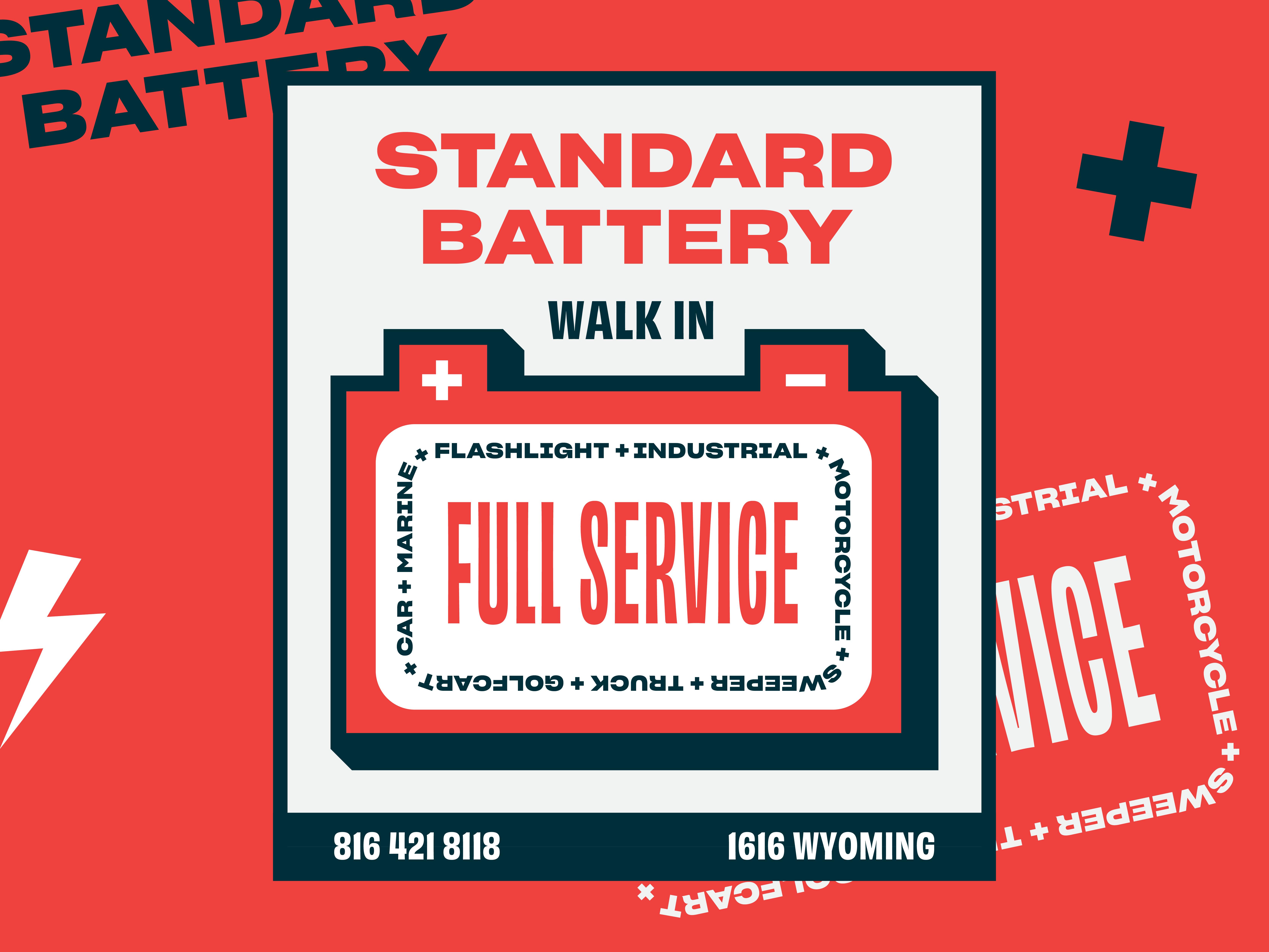Standard battery dribbble 01