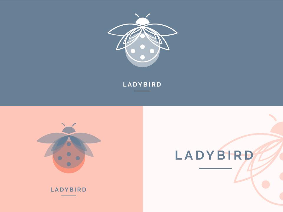 Ladybird #2 logo ladybird illustrator color fun illustration design