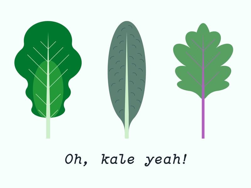 Oh, Kale Yeah! lettuce sustainability sustainable vector illustration kale green geometric