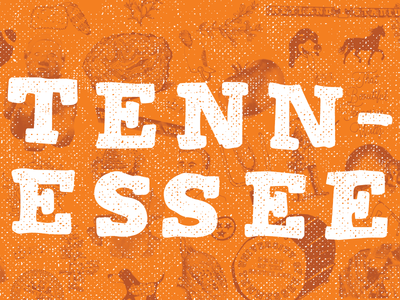 That Time in Tennessee football volunteers tennessee state symbols orange