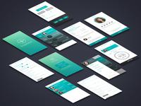 Snapsitter UI/UX Design