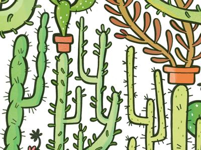 Quilliam's Cactuses