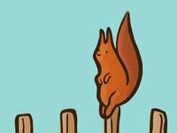 Huckleberry Squirrel