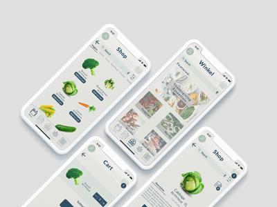 Grocery App Concept