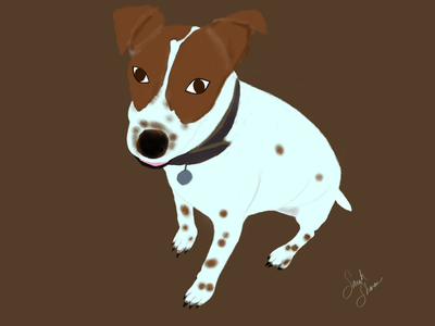 Dungee the Jack Russell procreate illustrations jack russells dogs