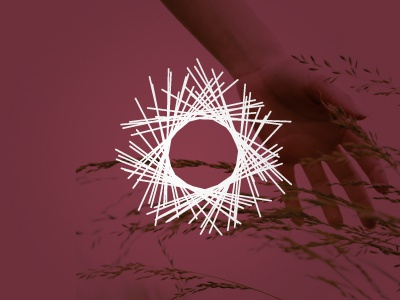 Matrix Detail logo design brand development