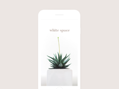 White Space minimalism simplicity whitespace