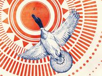 Birds & Monsters - Duck