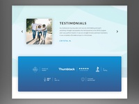 Testimonial and Icons Section
