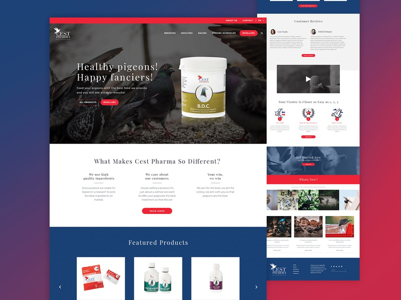 Cest Pharma Homepage Design design minimalist clean simple illustrations logos icons call to action catalog store photoshop testimonials products doves happy pigeons