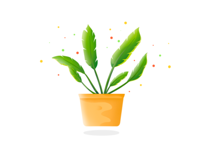 Plant 🌱 dribbble texture flat pot procreate vector design illustration art tree plant