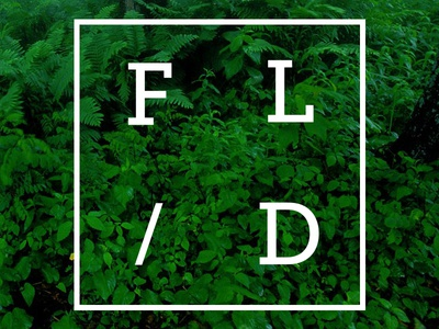 FL/D logo typography branding identity