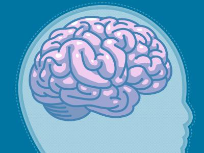 Cutaway illustration vector brain head