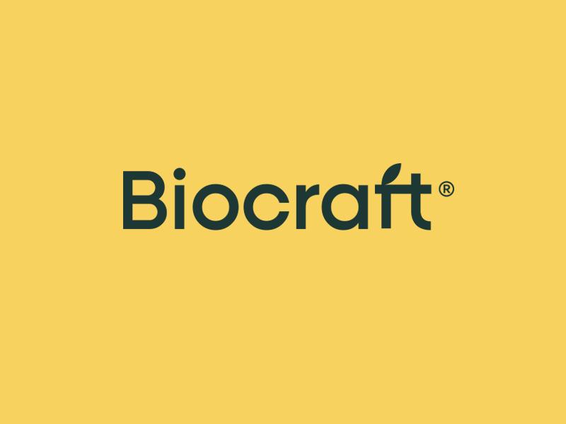 Biocraft Logo leaf leave type logotype logo