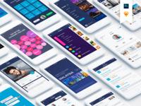 Mountify Mobile UI Kit