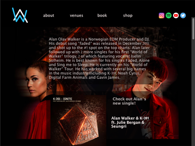 Alan Walker Website Mockup