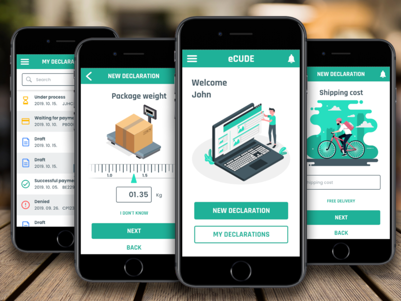 eCUDE - Online customs declaration animation process boarding declaration customs administrative uidesign design tegri