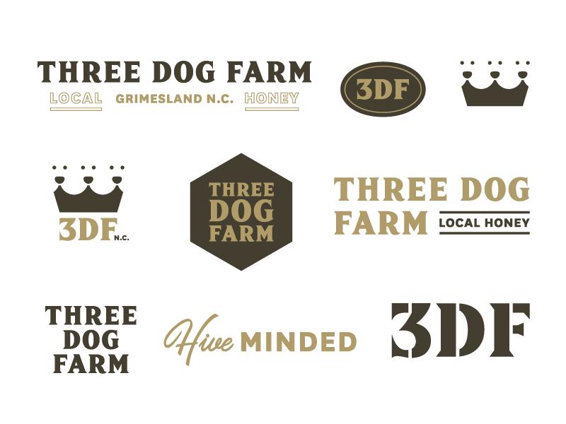 3DF Secondary Marks icons icon system visual identity identity brand branding