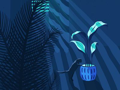Plant Illustration cats graphic design blue contrast night plant love plant illustration illustration