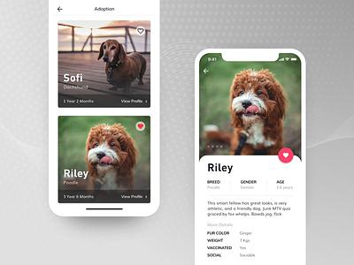 Pet Adoption App design pet app pet mobile ios app app ios adobe xd ux ui