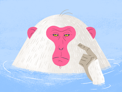 Japanese Macaque textures brushes hot springs japan macaque photoshop illustration