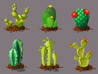 Cute Different Types Of Cactus Plants. Realistic Decorative Icon