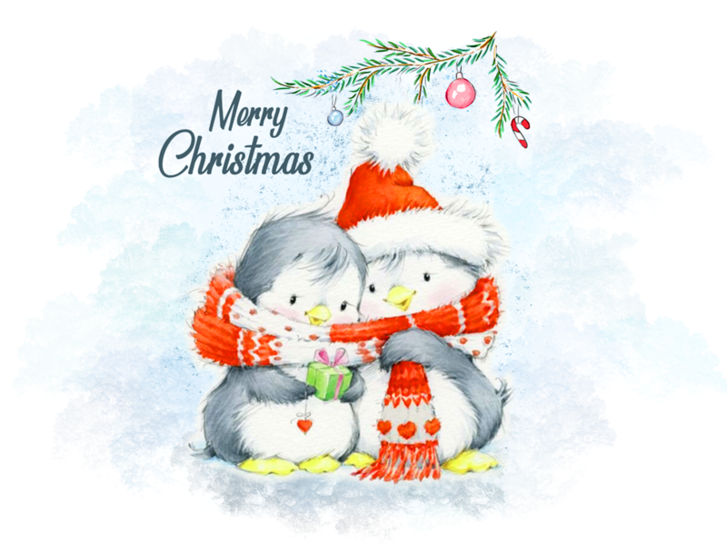 Christmas Illustration #penguins character design christmas penguins cartoon children illustration