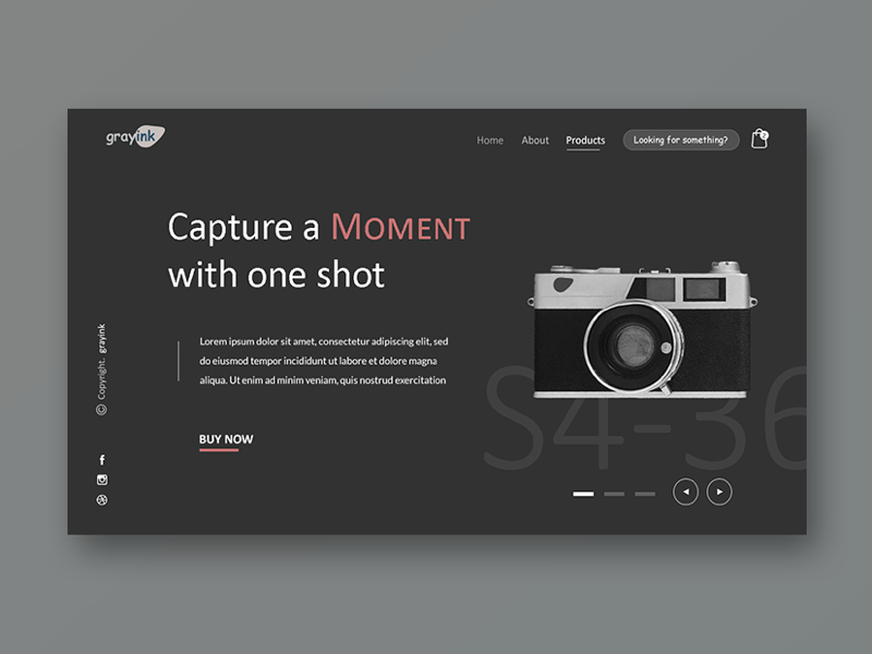 Grayink Gadget Store camera ui design ux design ux ui website web design