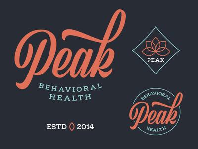 Peak identity therapy branding mark logo vector